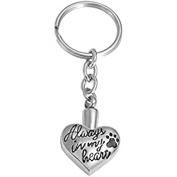 Valyria Memorial Pet/Dog Paw Keychain/Necklace Always in My Heart Pet Urn Keepsake Charm Ashes Keyring/Necklace with Engraving