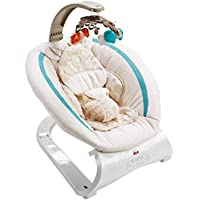 Fisher-Price Deluxe Bouncer (Soothing Savanna)