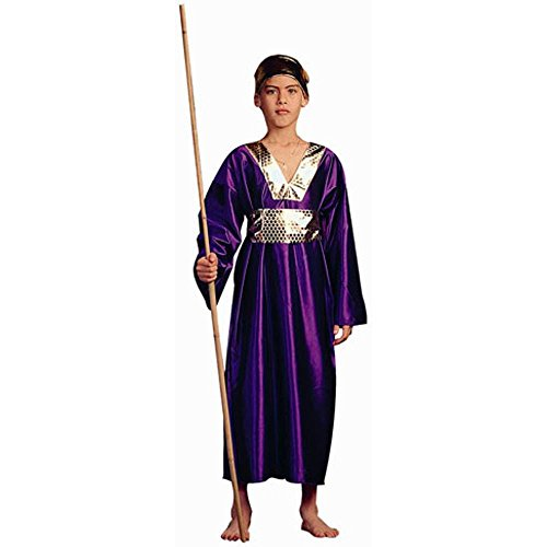 Purple Wiseman Child Costumes (Child's Purple Wiseman Biblical Costume (Size: Large 12-14))