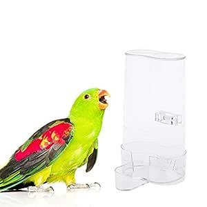 Manyo Alimentador Automático De Aves para Mascotas, Alimentación ...