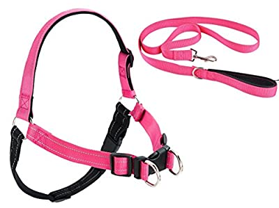 No Pull Reflective Dog Harness and Leash Padded Pink
