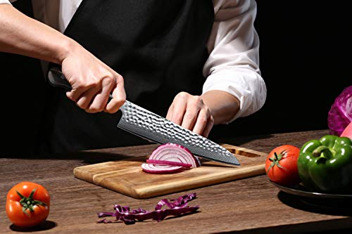 Chef Knife 8.2 Inch - Japanese 67 Layer VG 10 Damascus Steel with G10 Handle
