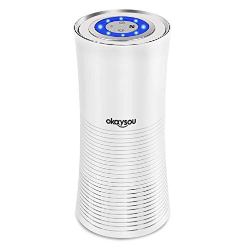 Okaysou Home Air Purifier with True HEPA Filter, Ultra Quiet Air Cleaner for Small Space, Allergies Odor Remover for Dust, Pet, Smoke, Pollens and More, 100V-240V, White