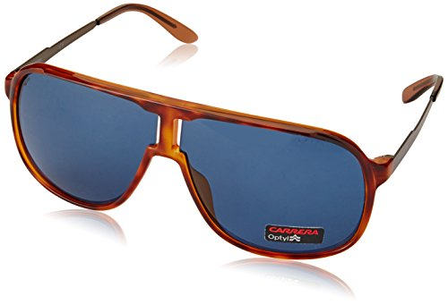 Carrera Sonnenbrille (NEW SAFARI) Noir (Lthvna Brown)