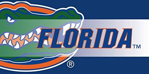 university-of-florida-gators-sassafras-decorative-floor-mat-insert-by-evergreen-enterprises