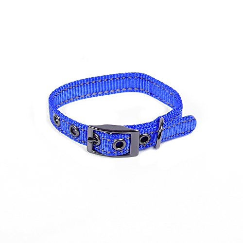 Max and Neo MAX Reflective Metal Buckle Dog Collar - We Donate a Collar to a Dog Rescue for Every Collar Sold (X-Small, ()