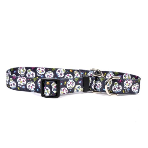 Sugar Skulls Black Martingale Control Dog