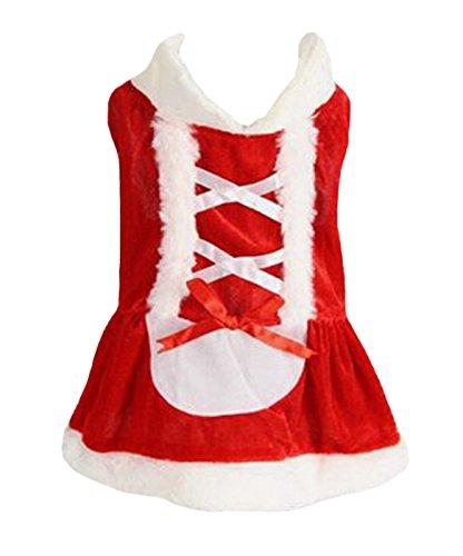 Petit (Santa Lady Costumes)