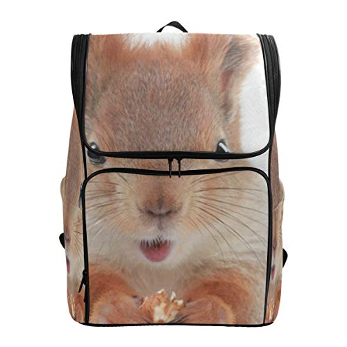 (Travel Backpack Little Squirrel Gym Backpack for Men Large Boxy Daypack)