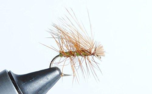 Elk Hair Caddis Dry Fly - Tan, Olive or Black - 6 Pack (Olive, #14) - Tan Elk Hair Caddis