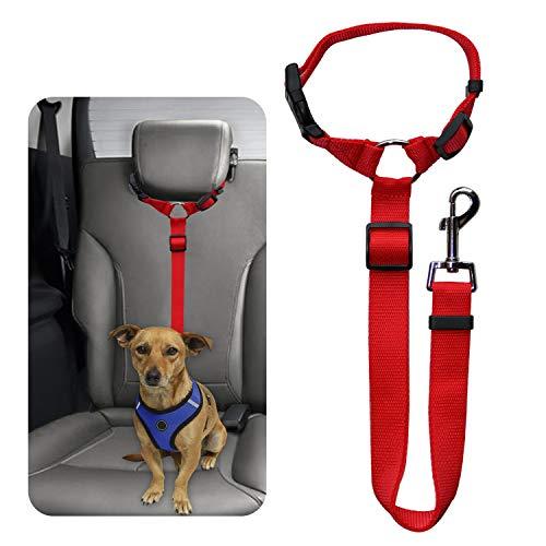 Best Dog Car Travel Accessories
