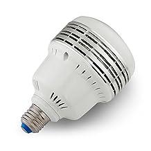 Neewer® 35W 5500K LED Daylight Balanced Light Bulb Lamp in E27 Socket for Photography and Video Lighting (35 W 110V)