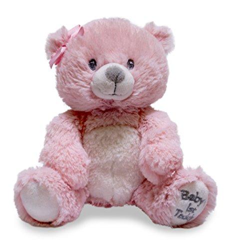 Cuddle Barn Baby's First Teddy Bear 6