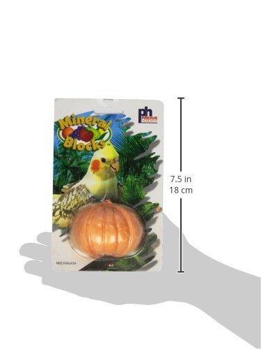 Prevue Pet Products Fruit Bird Mineral Blocks Assorted Styles and Colors Sold Individually