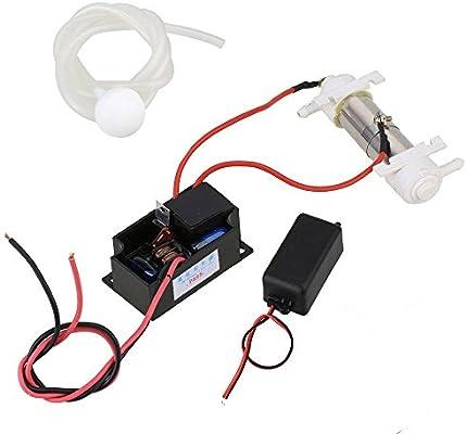 weone AC110 V 500 mg/h Generador de Ozono Tubo DIY con ozonizer ...