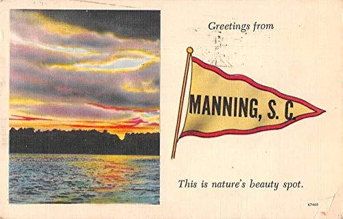 Manning South Carolina Greetings Pennant Flag Sunset Postcard JE359353