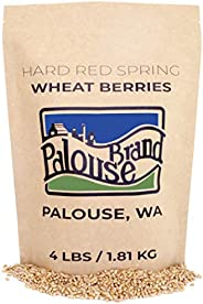 Non-GMO Project Verified Hard Red Spring Wheat | 4 LBS |100% Non-Irradiated | Certified Kosher Parve | USA Grown | Field Tra
