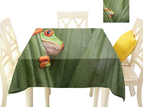 Elegant Waterproof Spillproof Polyester Fabric Table Cover Red Eyed Tree Frog Crowling Between Leaves Tropical Jungle Rainforest Night Art Print W50 x L50, Indoor Outdoor Camping Picnic ()
