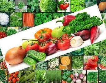 Seeds Get 37 Varieties USA Grown Large Garden Seeds Variety Pack Grandchamps Best Quality #JDT01YN by baskets planting