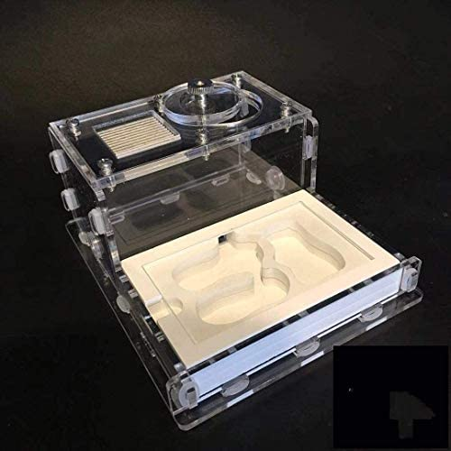 Ameisennest Ameisenturm Mini-Gips Ameisenfarm Ameisenschloss Ameisenwerkstatt Acryl 25MM 3 PCS Bambusrohre Lebende Ameisen nicht enthalten DIY Geburtstagsgeschenke