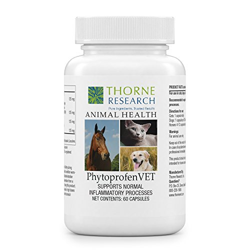 Thorne Research Veterinary - PhytoprofenVET - Supports Normal Inflammatory Response - 60 Capsules