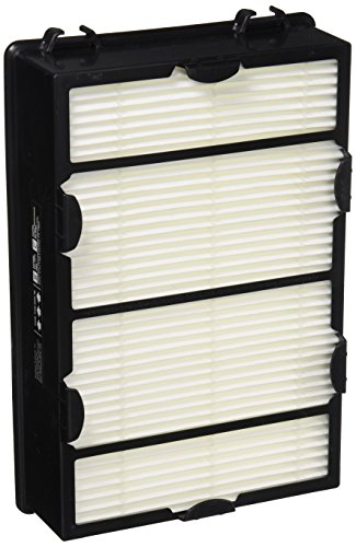 Holmes Group True HEPA Filter with Enhanced Mold Fighting Power, 2-Pack, White, 2 Count – HAPF600DM-U2
