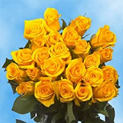 50 Fresh Cut Yellow Roses for Valentine's Day | Ibiza Roses | Fresh Flowers Express Delivery | The Perfect Valentine's Day Gift