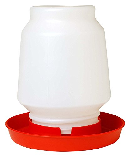 Little Giant 1-Gallon Plastic Poultry Fount Complete Waterer with 750 Red Base (Waterer Base)