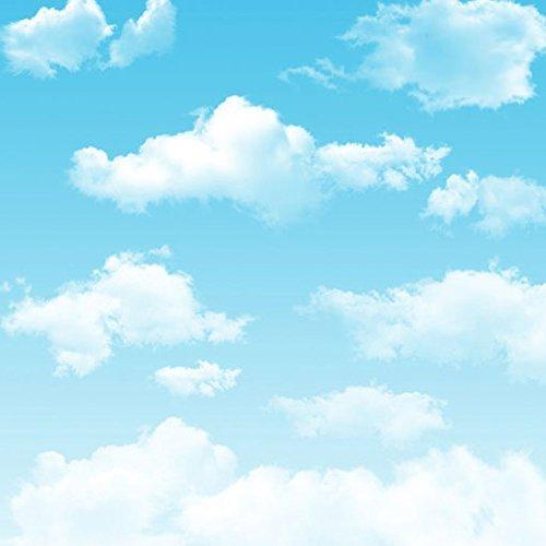 Generic White Cloud Blue Sky Photography Backdrops Newborn Children Outdoor Photo Studio Background 150cm*200cm LQ-261