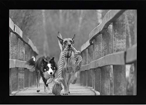 photo frames 8x12 - 4