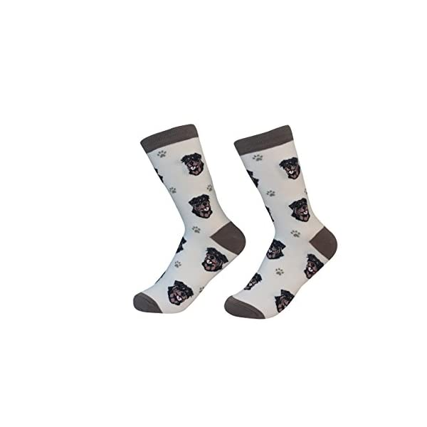 Rottweiler Dog Breed Socks Unisex Sock Daddy by E&S Pets 1