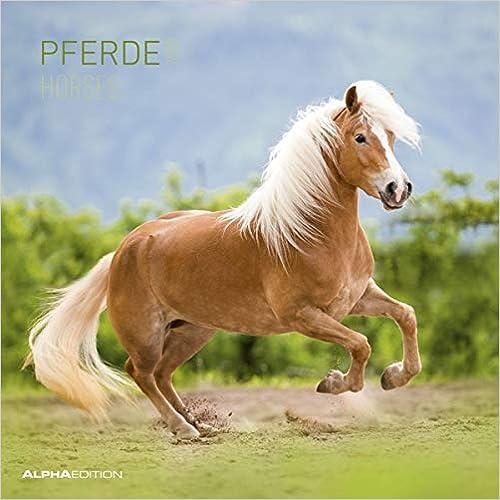 Calendario da muro 30x30 cm horses 2020