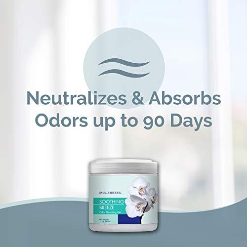 Smells Begone Air Freshener Odor Absorber Gel - Absorbs ...