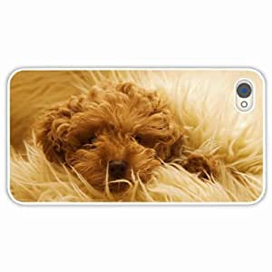 iPhone 4 4S Black Hardshell Case dog muzzle fluffy White Desin Images Protector Back Cover