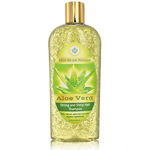 Natural & Organic Restorative Shampoo - Aloe Vera, Premium Hair Regrow Shampoo for Men and Women - with Biotin, Hemp Oil, Ginseng for Thin, Frizzy, Dry Hair & Split Ends Treatment - 12 oz Berry Volumizing Shampoo