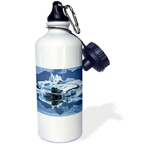 3dRose Danita Delimont - Icebergs - Europe, Iceland, Skaftafell NP, Lake Jokulsarlon. Iceberg reflection. - 21 oz Sports Water Bottle (wb_277487_1) by 3dRose