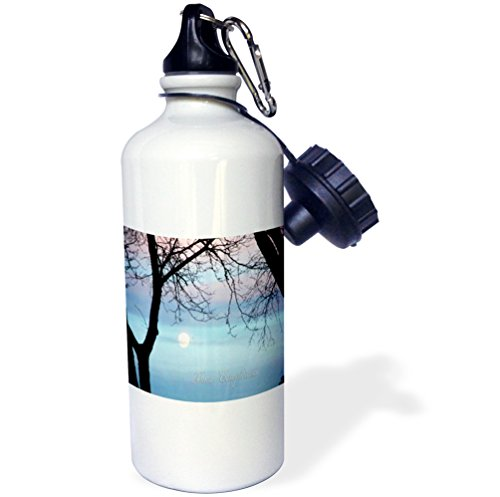 3dRose Beverly Turner Birthday Photography - Pastel Sky, Buon Compleanno, Happy Birthday in Italian - 21 oz Sports Water Bottle (wb_43392_1)