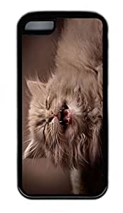 iPhone 5C Case, Personalized Protective Rubber Soft TPU Black Edge Case for iphone 5C - Hi Cat Cover