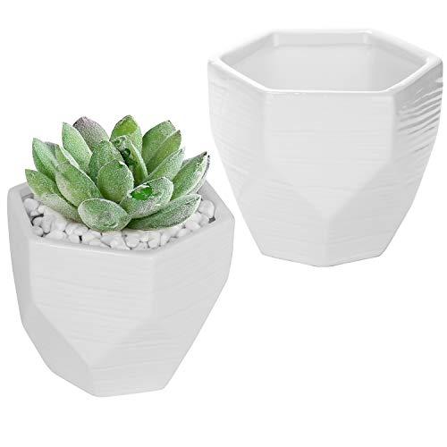 5-inch Multi-Faceted White Ceramic Succulent Plant Bowls, Cacti Planter Pots, Set of 2
