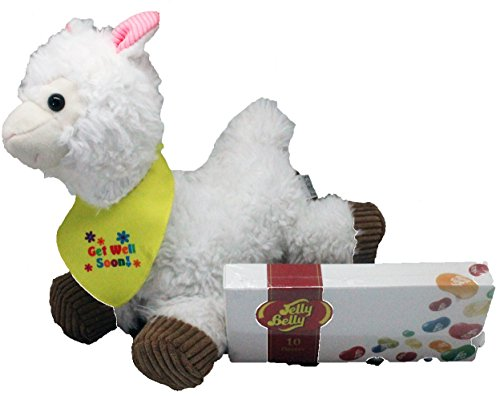Get Well Llama Plush - Get Well Gift Set with Jelly Belly Jelly Beans 2 Piece Set - Comes in an organza bag so it