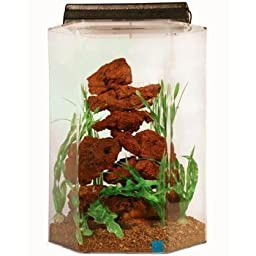 SeaClear 20 gal Deluxe Hexagon Acrylic Aquarium Combo Set, 15 by 15 by 24\