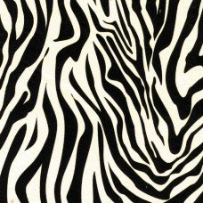 zebra print animal print tissue wrapping paper 20 sheets 18gsm colour fast acid - Animal Pictures To Print And Colour