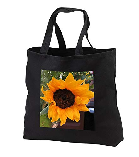 Jos Fauxtographee- Accented Edges Sun Flower - Accented edges of a sunflower in gold and brown - Tote Bags - Black Tote Bag 14w x 14h x 3d (tb_304181_1)
