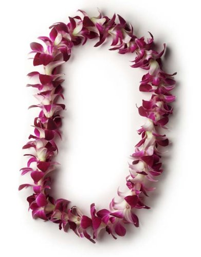 Hawaiian Lei - Fresh Single Strand Orchid Lei - Classic - Orchid Leis