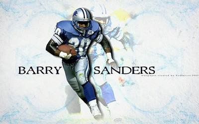 Barry Sanders 24X36 Banner Poster RARE #RWF564821 ()
