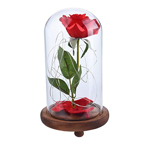 Star_wuvi Beauty and The Beast Red Rose kit,Enchanted Led Light with Fallen Petals in Glass Dome on Wooden Base Gift for Valentine's Day Christmas Home Decor Party Wedding Anniversary,Shipped From USA]()