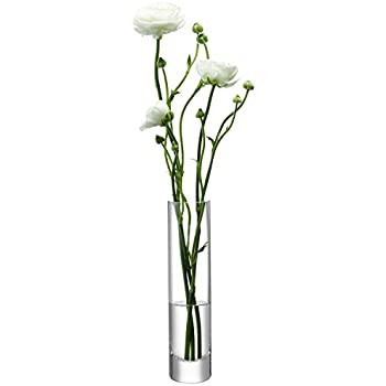 Amazon Lsa International Column Vase Slim H975 X O25