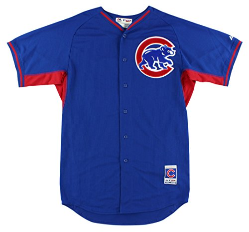 Majestic Mens Chicago Cubs MLB Starlin Castro Batting Practice Jersey Royal Blue L Chicago Cubs Batting Practice Jersey