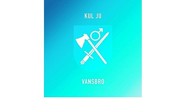 vansbro dating apps