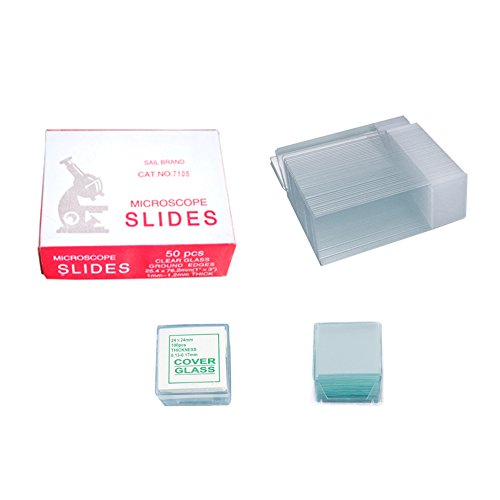 Hecate 7105 50-Pieces Blank Microscope Slides & 100-Pieces Square Cover Glass